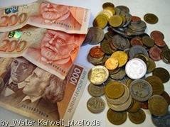 Geld und Zeitverschwendung